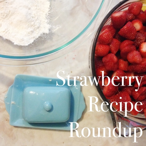 Strawberry Recipe Roundup from Meridith Creates